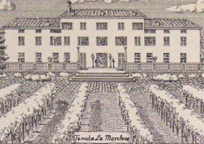 Tenuta La Marchesa - Stampa d'epoca