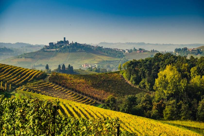 Monferrato: its history and its wines.