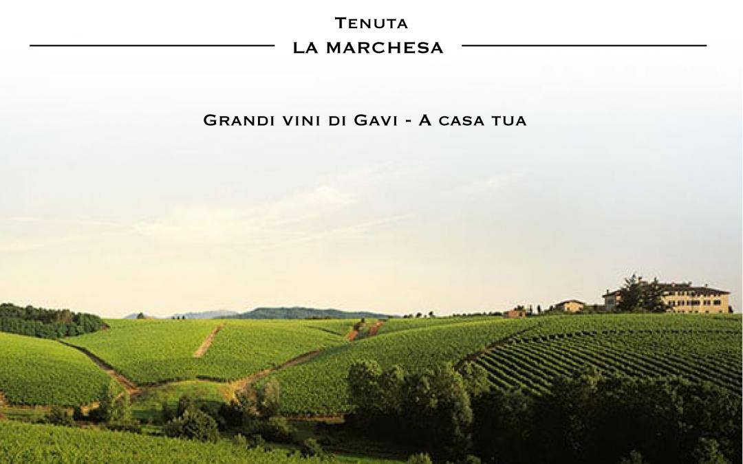 Vino a domicilio nel Monferrato fra Piemonte, Liguria e Lombardia