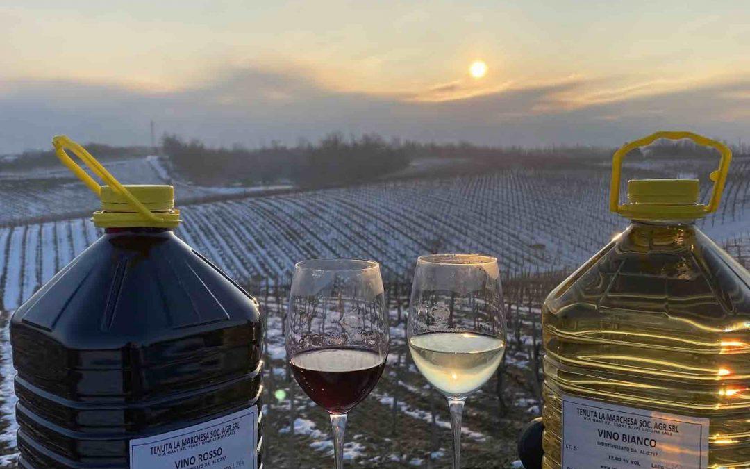 Acquisto di vino sfuso da azienda agricola della zona del Gavi